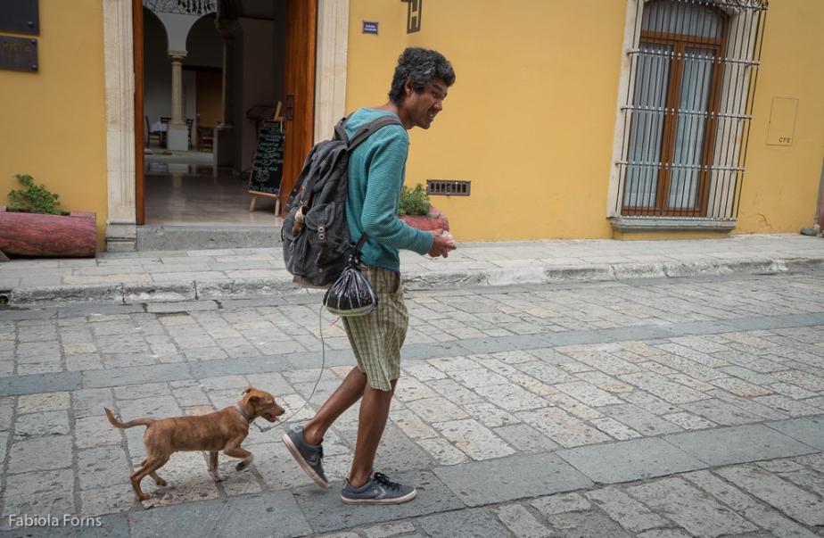 A Moment in the Life of Tigrito,Oaxaca
